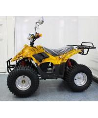 Электроквадроцикл Electrotown 750E