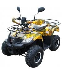 Электроквадроцикл MYTOY 1000B